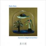 poésie, images, francophone, Roumanie, Radu Bata, Jacques André éditeur, Jean-Pierre Longre